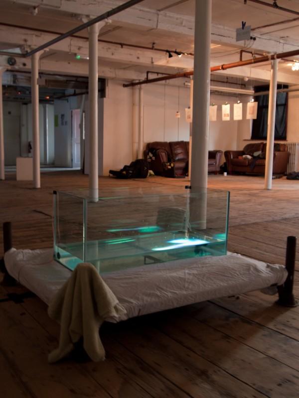 Sam Salem & Patrick Sanan's 'Pond Life' interactive installation.